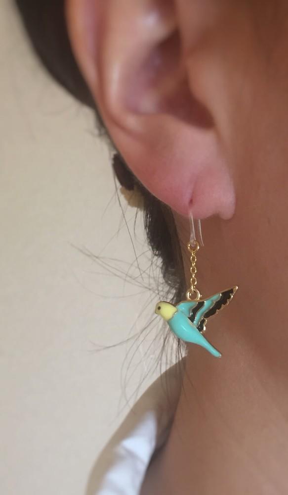 鳥のピアス2